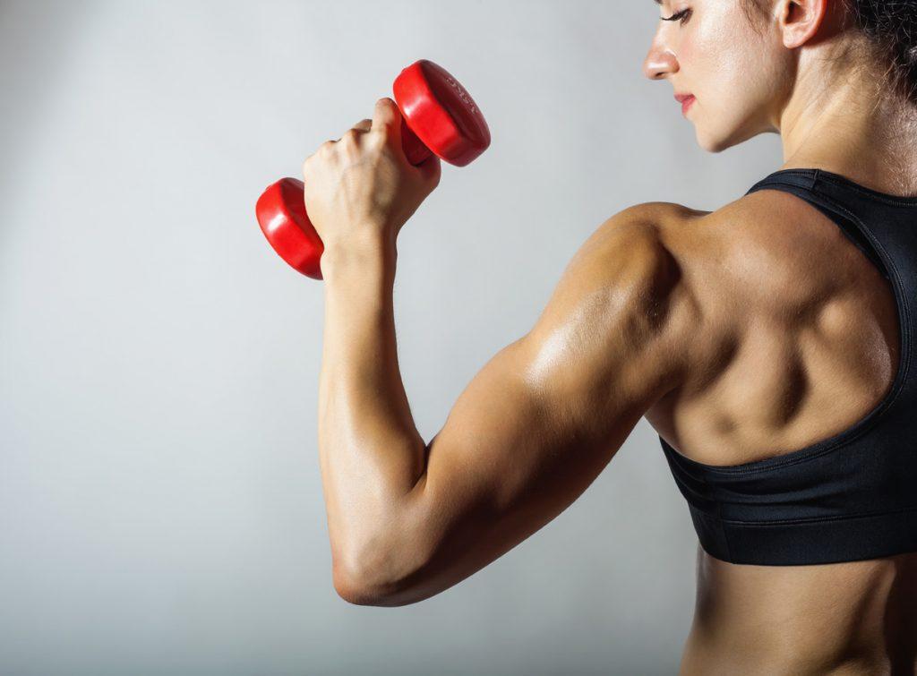 Budujte svaly
